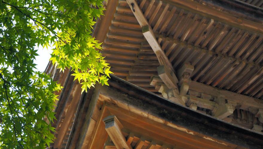 能登・羽咋にある妙成寺 (みょうじょうじ) でしっぽり大人デート