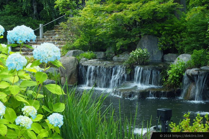 手入れが行き届いた庭園と池
