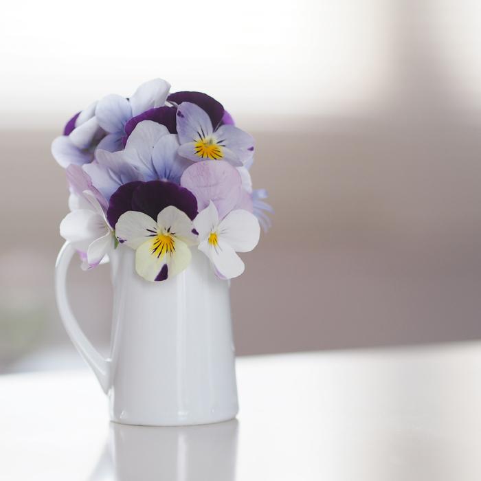ビオラの花束