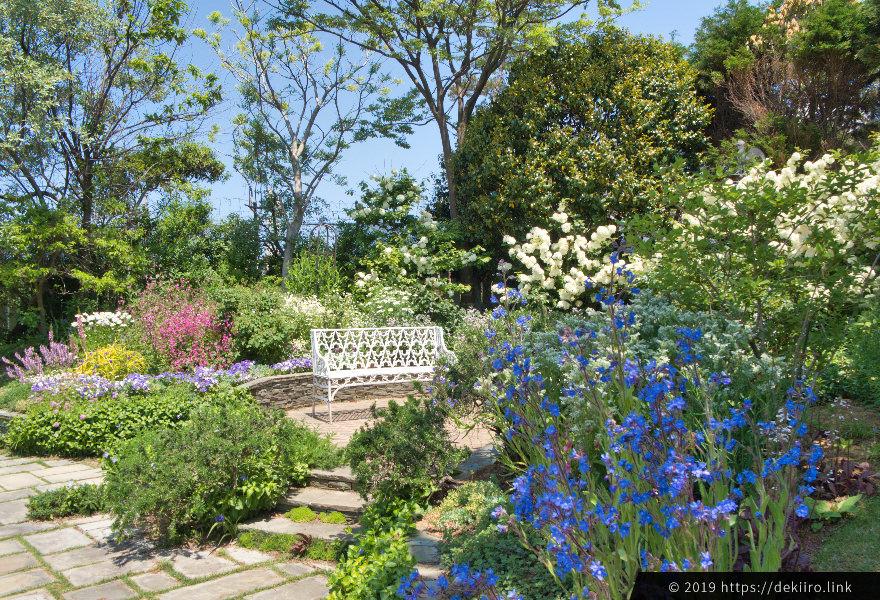 フローリィの庭園に咲く花々