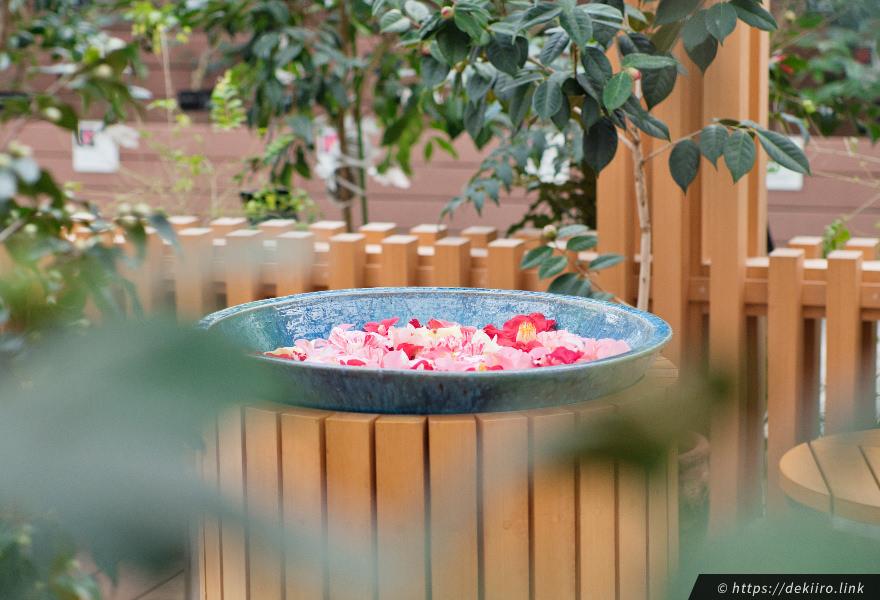 ツバキの水鉢