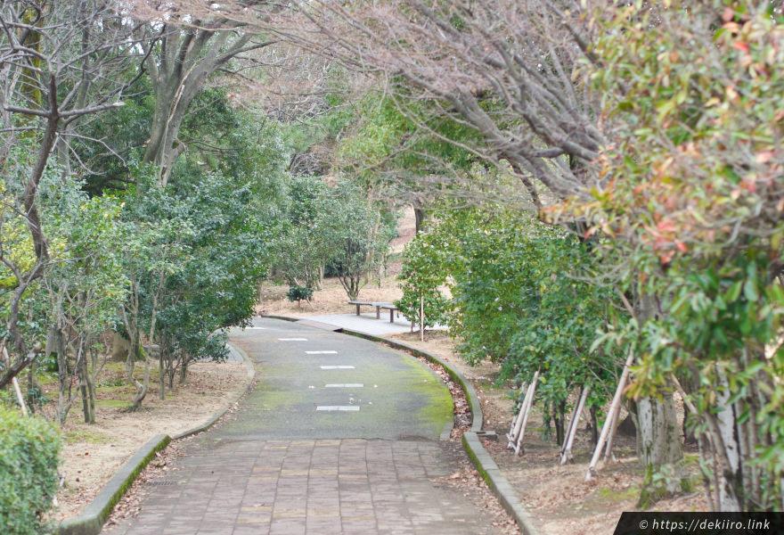 遊歩道「椿の径」